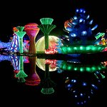 Фотография Dubai Garden Glow