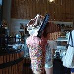 Το παγωτό DaVinci σε χωνάκι !