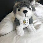 Watertown Hotel - A Staypineapple Hotel