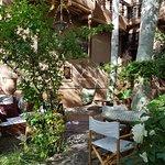 Jardim , garden