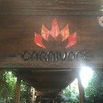 The Carnivore Restaurant