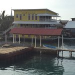Bay Islands College of Diving resmi