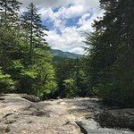 Natural beauty awaits in the Basin