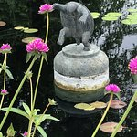Dancing in the water pond. Don't miss the gardens!