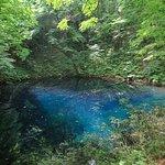 Blue Pond Resmi