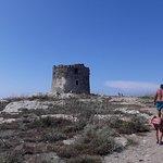 Bilde fra Torre della Pelosa