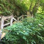 Ha Ha Tonka State Park Foto