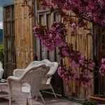 Nuestro Photo-Call en plena floración de cerezos