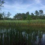 Jakes Branch County Park의 사진