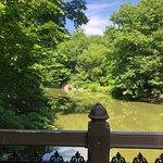 Bilde fra Central Park