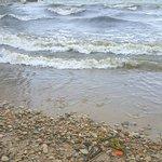 South Bass Island照片
