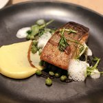 Grilled Scottish Salmon