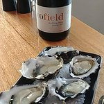 Oysters naturale