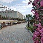 Bilde fra Park Hotel Porto Mare