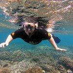 Foto de Bali Scuba