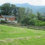 The Inn at Mount Vernon Farm Picture