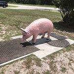 Every BBQ restaurant needs a pink pig!