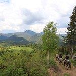 Horse Riding Tour in the Bicaz Gorges - Hasmas Mountains National Park
