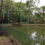 Fazenda Bananalの写真