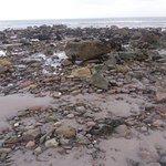 Miejscami plaża jest pełna kamieni, ale są piękne i o różnych kształtach.