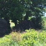 Mushroom Rock State Park照片