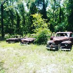 Фотография Roadside Rusted Ford Trucks