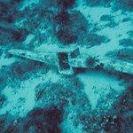Foto de Aquatic Dive Club