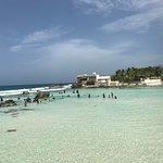 Фотография Mia Reef Isla Mujeres