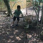 Con el kanguro