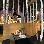 È particolare, con tronchi di betulla sparsi ovunque che creano un ambiente molto gradevole. Ott