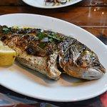 Photo of Poseidon Fish Taverna