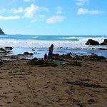 Hot beach digging holes