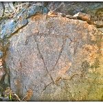 Foto de Puako Petroglyph Archaeological Preserve