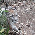 Foto de Zoo Ave