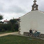 Marty Bike Rental Φωτογραφία