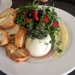 Burrata with Berry Salad