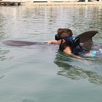 Our son swimming with the dolphin