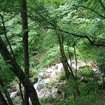 Billede af Wildensteiner Wasserfall