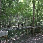 "Acrogivry ""L'Aventure en Forêt"""