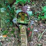 Foto de Glenview Gardens & Hobbit House