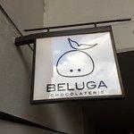 Chocolaterie Beluga - sign