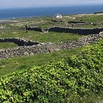 Beautiful day on Inis More