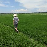 Stopping to take photos in a rice field