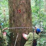 Pu Mat Natural Park - Nghe An