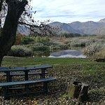 Kardouw Country Retreat - Tree Tops