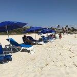 Ocean Z chairs and umbrellas at Arashi Beach