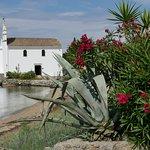 Corfu - one stop on the Photography Safari