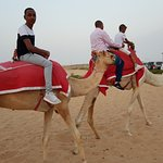 I came to dubai with my family for vacation and I booked arroha tours for their desert safari pa
