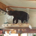 Foto Running Bear Pancake House