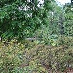 Prag - Botanical Garden 8
